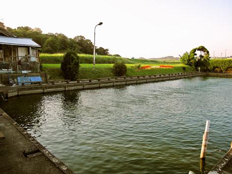 半田市十三塚釣堀の第二釣り池